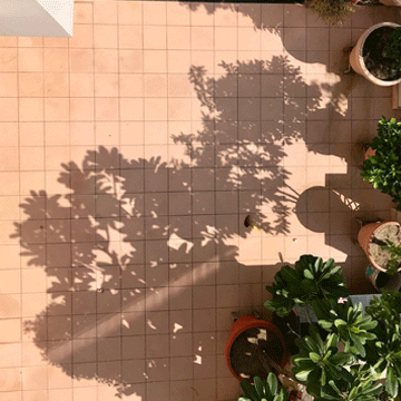Get Stylish Cement Tiles in Jaipur contact us